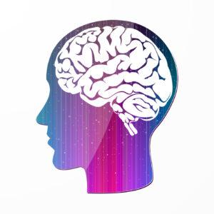Imagination intelligence