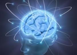 adhd and the cerebellum